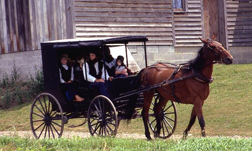 the amish in america clash of Amish beard cutters face possible prison terms as jury weighs clash of the clippers a disagreement among america's amish that led to a series of forced beard cuttings has ended with 16.