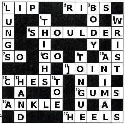 Answers To Anatomy Crossword Intermediate Efl Puzzles